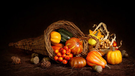 thanksgiving_cornucopia20141120